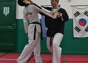 Taekwondo 350