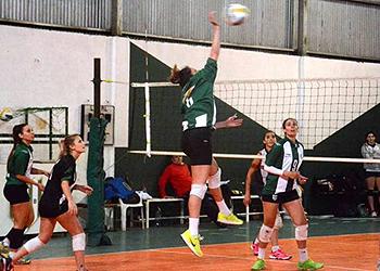 Voleibol 350